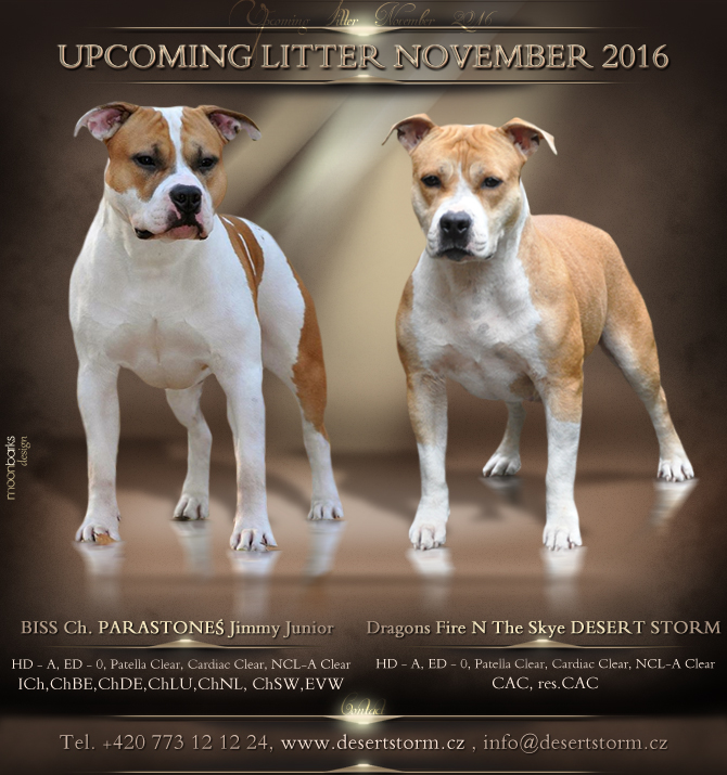Upcoming_Litter_2016